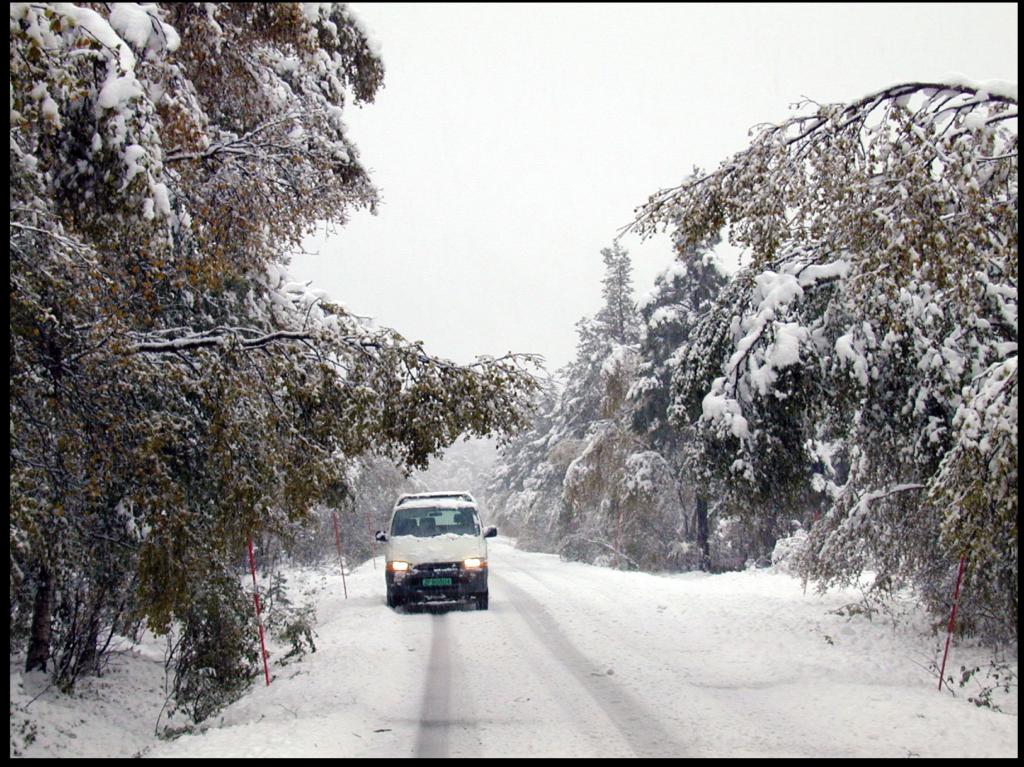 Slik så det ut på FV321 20. september 2003 etter at det hadde falt 20 cm snø i løpet av natta.
